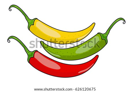 Chile pepper. green, yellow and red.  vector illustration.