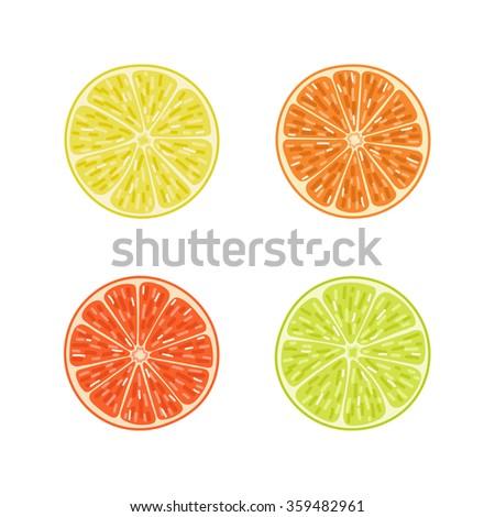 Citrus slices set. Orange, lime, lemon, grapefruit. Vector illustration in cartoon style. - stock vector