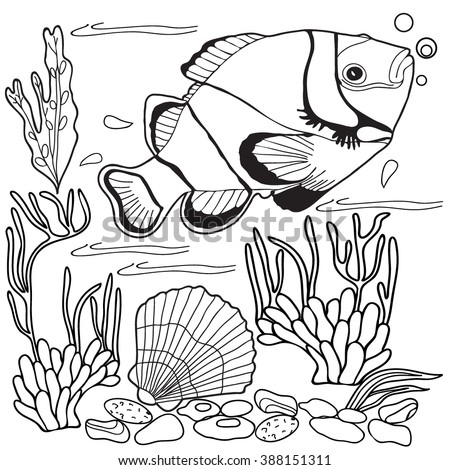 Coloring  book.  Hand drawn. Adults, children. Sea animals. Black and white.