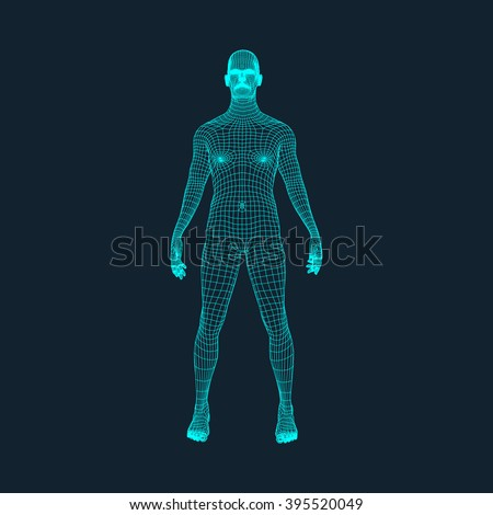 3D Model of Man. Polygonal Design. Geometric Design. Business, Science and Technology Vector Illustration. 3d Polygonal Covering Skin. Human Polygon Body. Human Body Wire Model. - stock vector