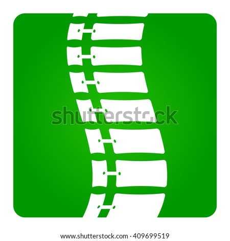 2D Vector Spinal column Musculoskeletal Image with Rounded Rectangle on White Background - stock vector