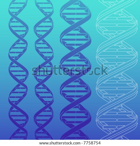 4 different DNA strands silhouettes - stock vector