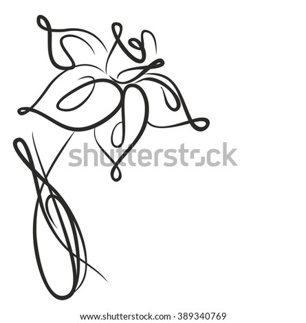 Drawing vector graphics with floral pattern for design. Floral flower natural design. Graphic, sketch drawing.    narcissus