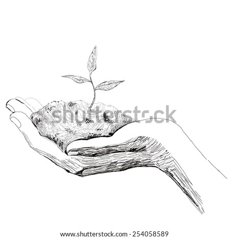 Ecology concept. The hand holds a small sprout. - stock vector