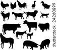 farm animals set - vector - stock vector