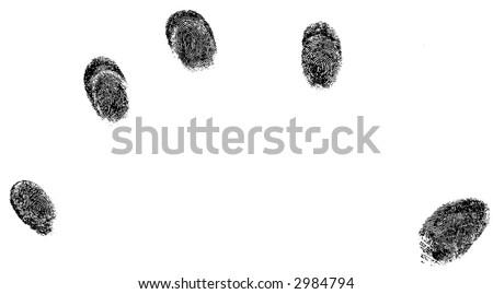 5 fingerprints - stock vector