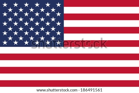 flag  american vector background - stock vector