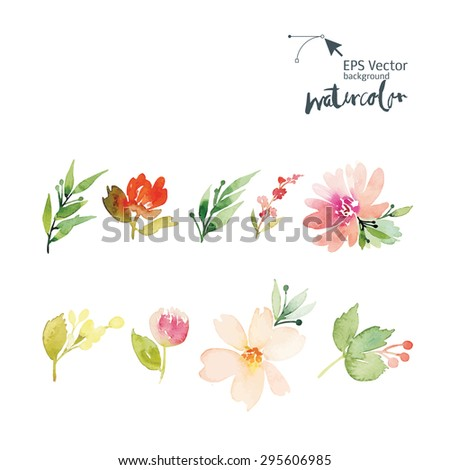 Flowers watercolor.  Set for postcards. - stock vector
