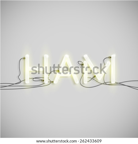 'HAM' made by neon font, vector - stock vector