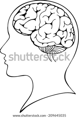head and brain vector illustration - stock vector