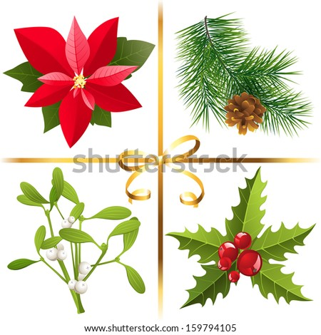 4 highly detailed Christmas plants  - stock vector