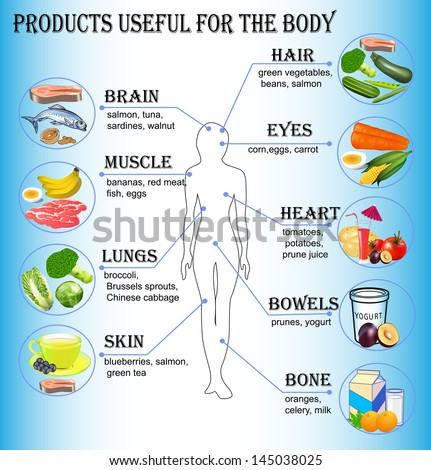 illustration of products useful for the human body - stock vector
