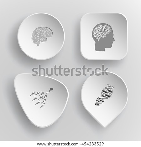 4 images:  human brains, spermatozoon, DNA. Medical set. White concave buttons on gray background. Vector icons. - stock vector