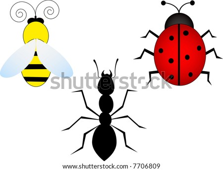 3 insects-bees,ladybug,ant-vector