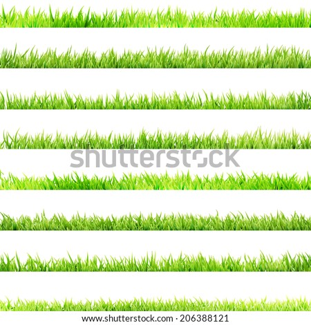 8 item set, small Grass isolated on white.  - stock vector