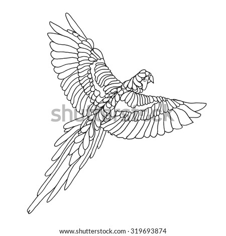 macaw parrot coloring page birds black stock vector 319693874
