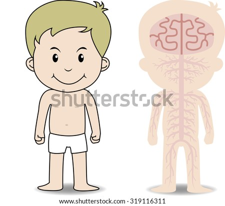 """My body"", educational anatomy body organ chart for kids. Cute cartoon little boy and his nervous system - stock vector"
