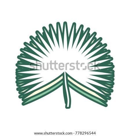 palm leaf vector illustration stock vector 778296544 shutterstock rh shutterstock com palm tree leaf vector free palm leaf vector png