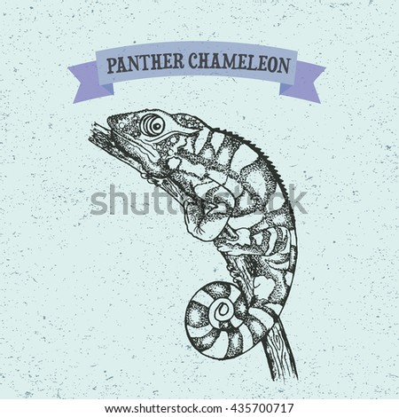 Panther Chameleon Reptile With Colorful Body Hand Drawn Illustration In Dot Art Style