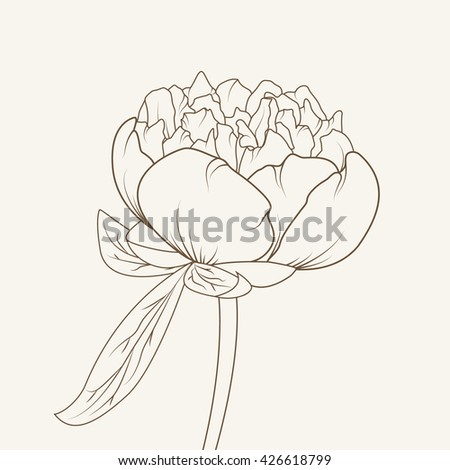 Peony flower isolated brown on beige background. Hand-drawn contour lines and strokes.
