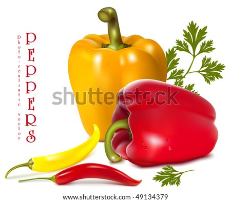 Photo-realistic vector illustration of  ripe colored peppers. - stock vector