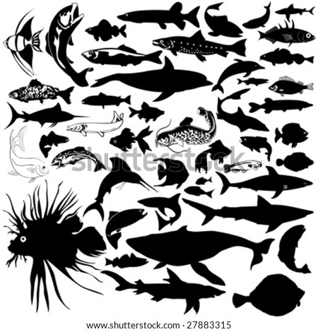 46 pieces of detailed vectoral fish and sea animals silhouettes.