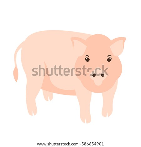pig vector illustration Flat style