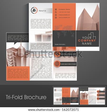 Brown vector brochure template design vertical stock for Professional brochure template