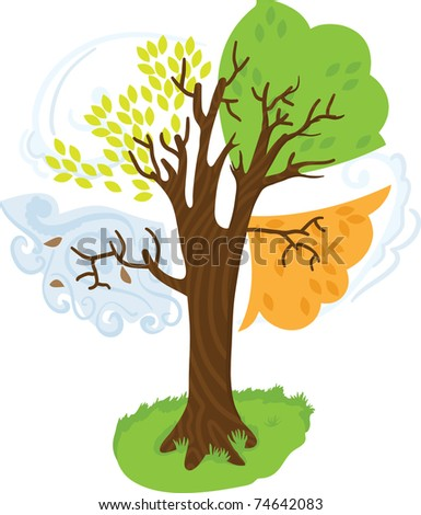 4 seasons tree - stock vector