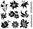"Set of black flower design elements (From my big ""Floral collection"") - stock vector"