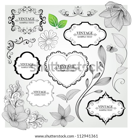 Set of  hand-drawing calligraphic floral frames and design elements. Vector illustration.