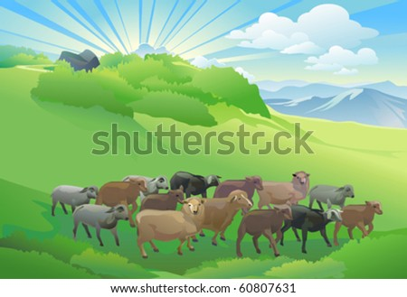 SHEEP HERD  GRAZING ON BEAUTIFUL HILL - stock vector
