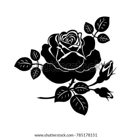 Silhouette of a rose. Vector composition of a large rose flower, twigs and buds.