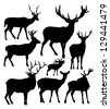 silhouettes of the deer - stock vector