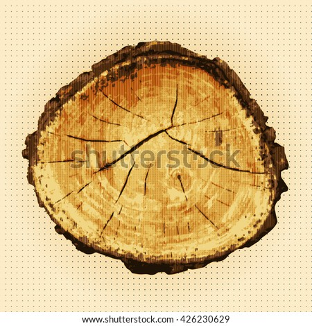 Structure of wood. Cross section of a tree trunk and stump. Vector and illustration.