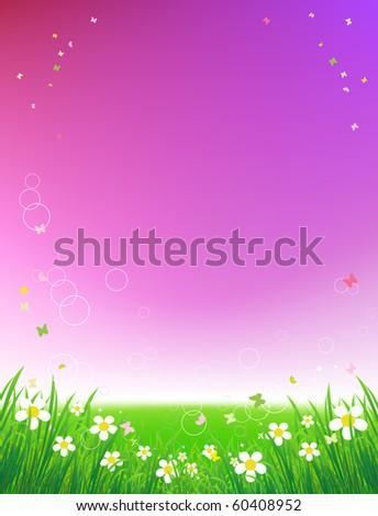 Sunset on green field, summer background - stock vector