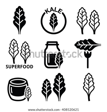 Superfood - kale leaves vector icons set    - stock vector