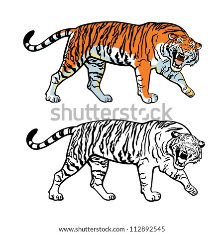 tiger,  vector picture isolated on white background,side view colored and black white image - stock vector