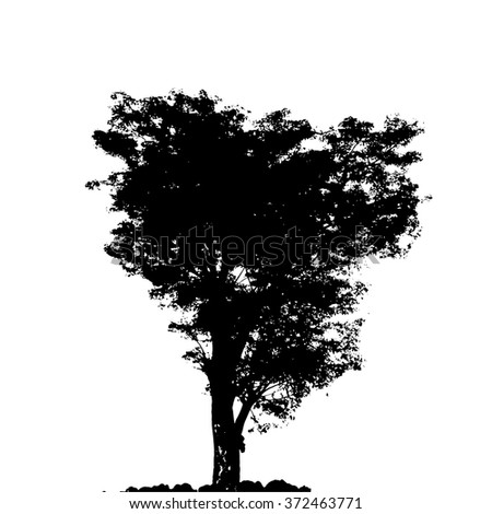trees in silhouettes.Vector - stock vector