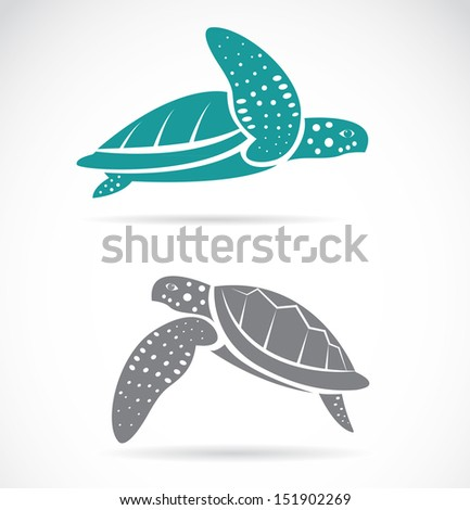 Sea Turtle Vector Images over 6100