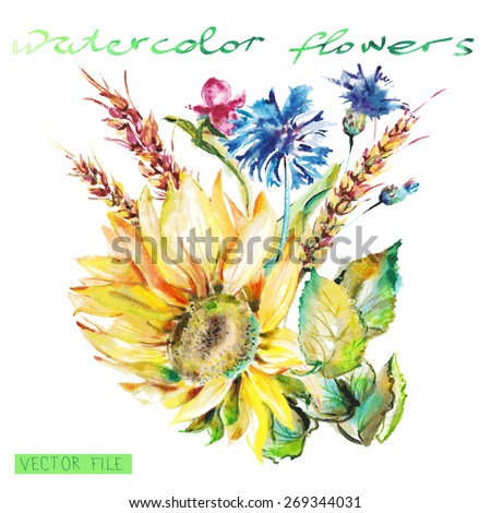 """Watercolor Vector Flowers. Vector Watercolour Flowers.Album""""New bouquets by a holiday from water color flowers"""".""""Blue flowers watercolor."""" """"Sunflower."""" - stock vector"""