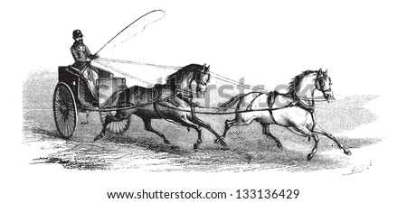 2-wheeled Cart drawn by 2 Horses in Tandem, vintage engraved illustration. Le Magasin Pittoresque - Larive and Fleury - 1874 - stock vector