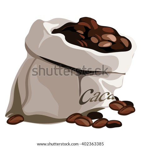 Cacao Beans Stock Images Royalty Free Images Amp Vectors