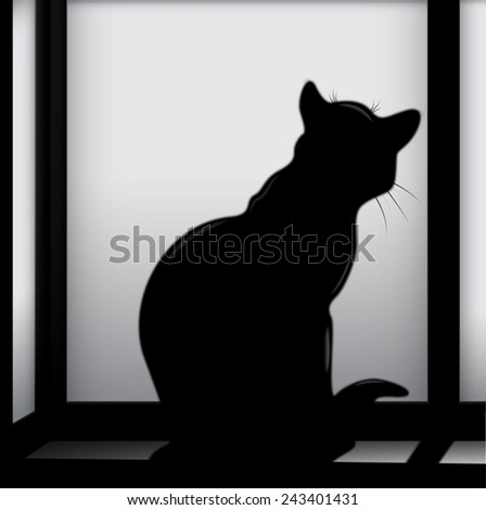 A black cat sits alone at night on the back windowsill in the moonlight, and looking at the misted window.