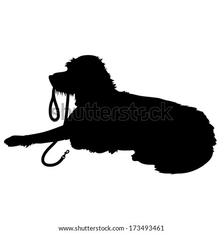 A black silhouette of a shaggy dog lying down with his leash in his mouth waiting to go for a walk - stock vector