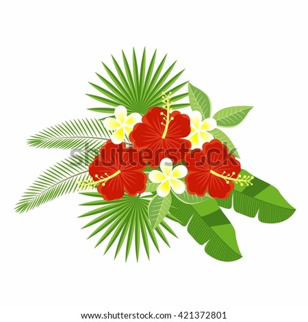 A bouquet of tropical flowers and leaves isolated on a white background. Flowers of hibiscus and plumeria, palm leaf, monstera. Floral pattern. plumeria and hibiscus. - stock vector