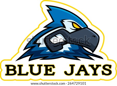 A cartoon illustration of a blue jay mascot head. - stock vector