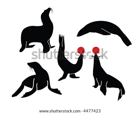 A collection of sea lion poses - stock vector