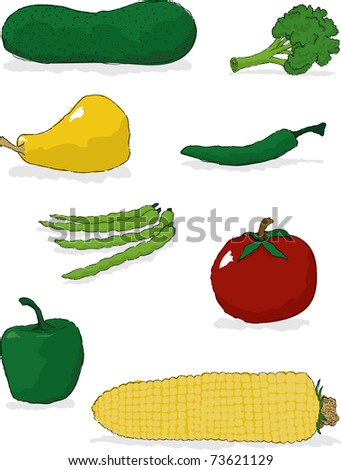 A collection of vegetable illustrations: cucumber, broccoli, squash, hot pepper, green beans, tomato, green pepper, corn.