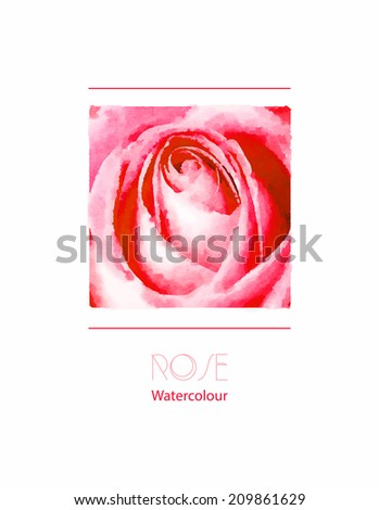 A delicate pink rose watercolour. EPS10 vector format - stock vector
